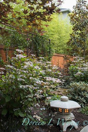 David West - Meyer garden_112