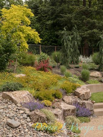 Lucy & Susan - Letson garden_706