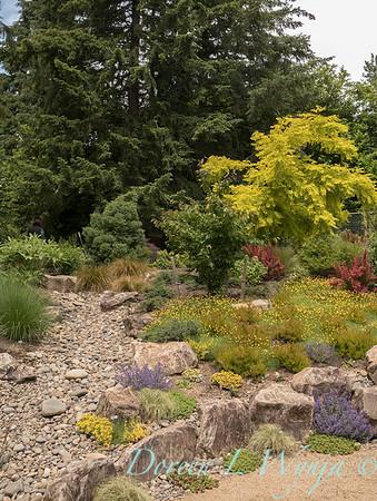 Lucy & Susan - Letson garden_705