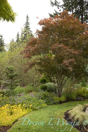 Marcia Peck - Marcia's garden_612