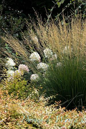 Perennial Partners design Windyhill Farm_707