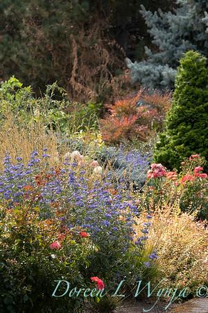 Perennial Partners design Windyhill Farm_702