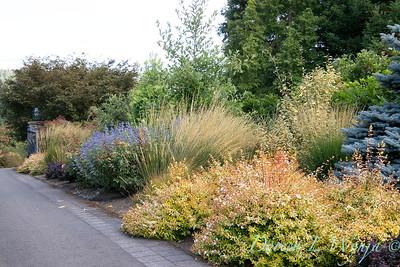 Perennial Partners design Windyhill Farm_742