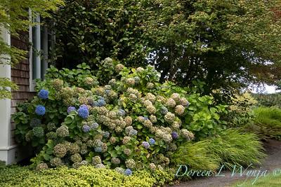 Perennial Partners design Windyhill Farm_736