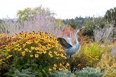 Perennial Partners design Windyhill Farm_724
