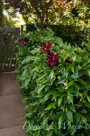 Ann & Greg's Garden_149