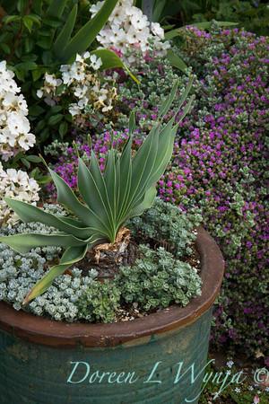 Ann & Greg's Garden_167