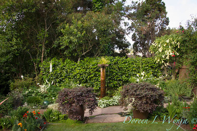 Ann & Greg's Garden_158