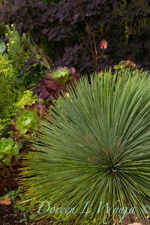 Ann & Greg's Garden_104