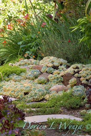 Ann & Greg's Garden_156