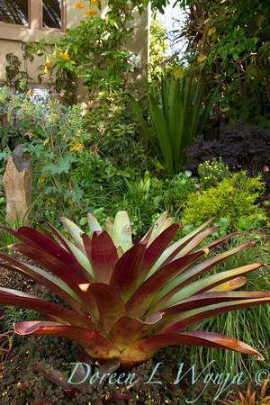 Ann & Greg's Garden_135