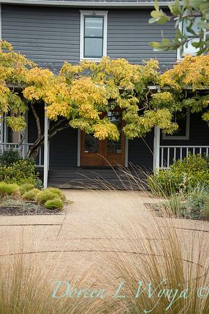 Argyle winery - designer Sean Hogan_2047