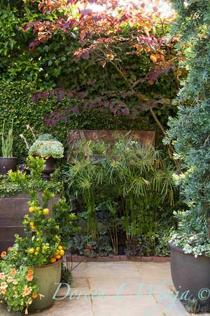Ann & Greg's Garden_155