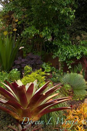 Ann & Greg's Garden_110