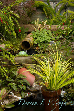 Ann & Greg's Garden_144