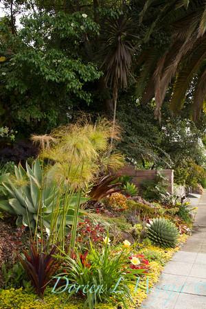 Ann & Greg's Garden_113