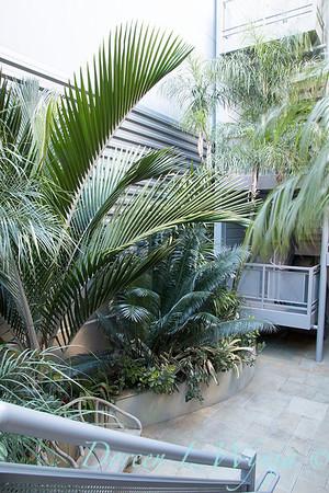 Debra's Vertical Garden_6007
