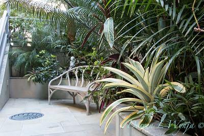 Debra's Vertical Garden_6013
