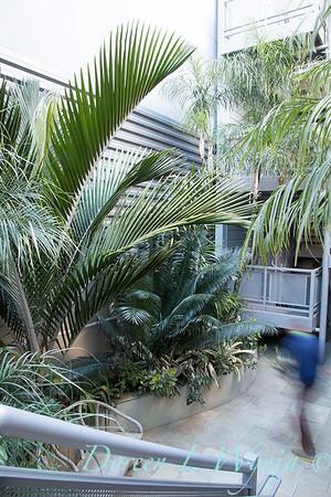 Debra's Vertical Garden_6006