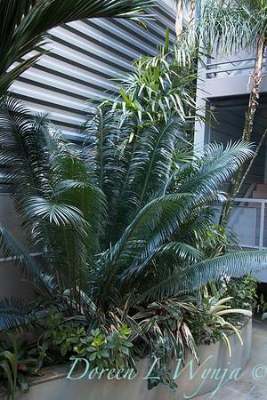 Debra's Vertical Garden_6027