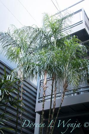 Debra's Vertical Garden_6024