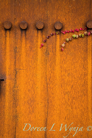 Artful rusted panel_0370