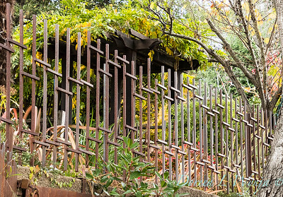 rusted fencing_0386