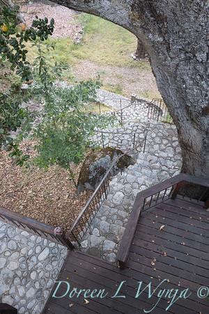 Stonework stairway- forged iron railing - wood decking around Quercus loabta base_4608