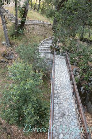 Umbellularia californica - Quercus agrifolia - Q lobata - stonework bridge_4462