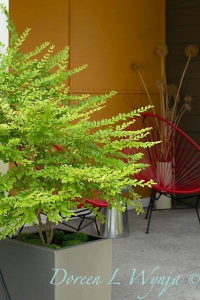 Lisa Bauer - designer's garden_1223