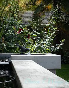 Lisa Bauer - designer's garden_1278