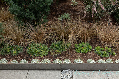 Lisa Bauer - designer's garden_1207