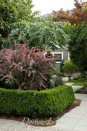 Lisa Bauer - designer's garden_1206