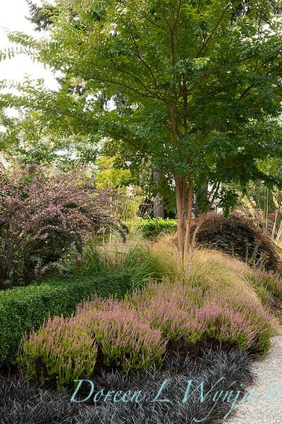 Lisa Bauer - designer's garden_1205