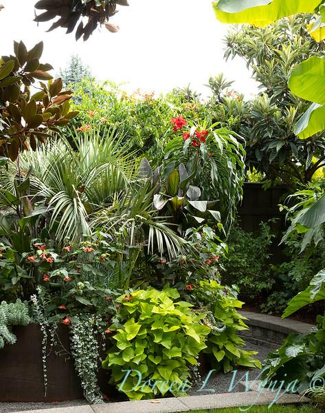 Lisa Bauer - designer's garden_1310