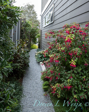 Lisa Bauer - designer's garden_1258