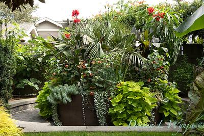 Lisa Bauer - designer's garden_1307