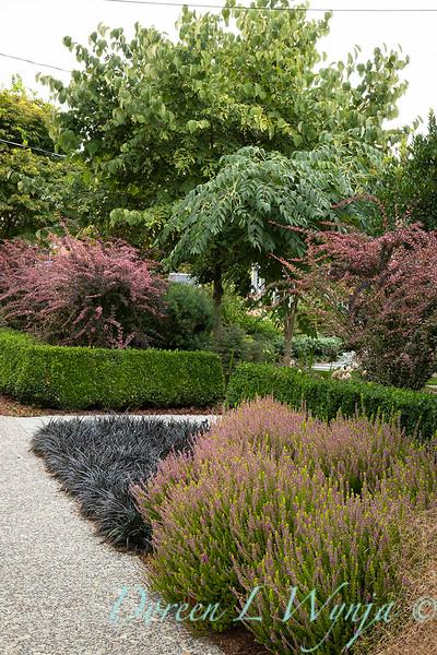 Lisa Bauer - designer's garden_1203