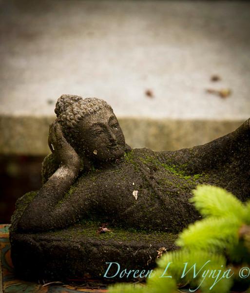 Reclining Buddha_7614