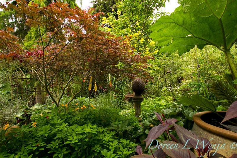Shade Garden_7824