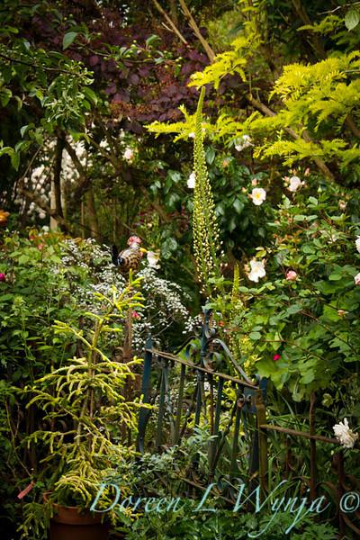 Vintage Garden_7227