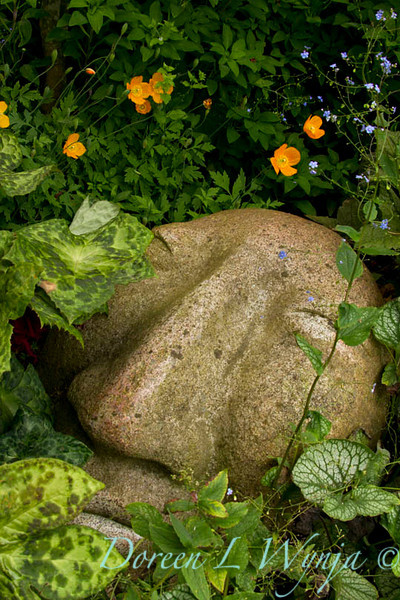 Stone face_7305