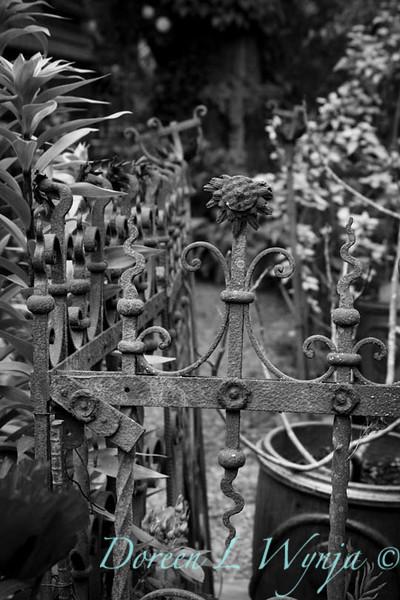 Vintage iron fence_7226