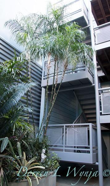 Debra's Vertical Garden_6023