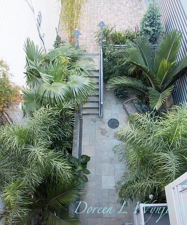 Debra's Vertical Garden_6020