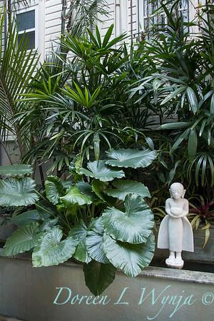 Debra's Vertical Garden_6017