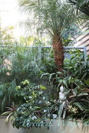 Debra's Vertical Garden_6015