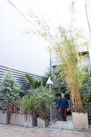 Debra's Vertical Garden_6002