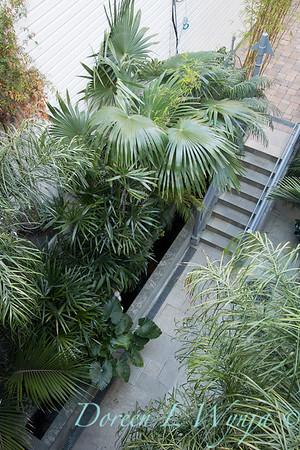 Debra's Vertical Garden_6021