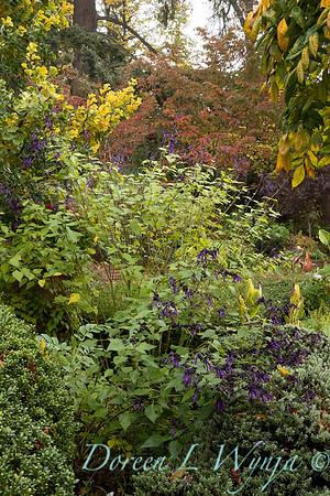 Dietrick fall garden_2016